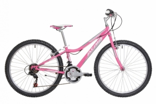 Atala Butterfly 24″